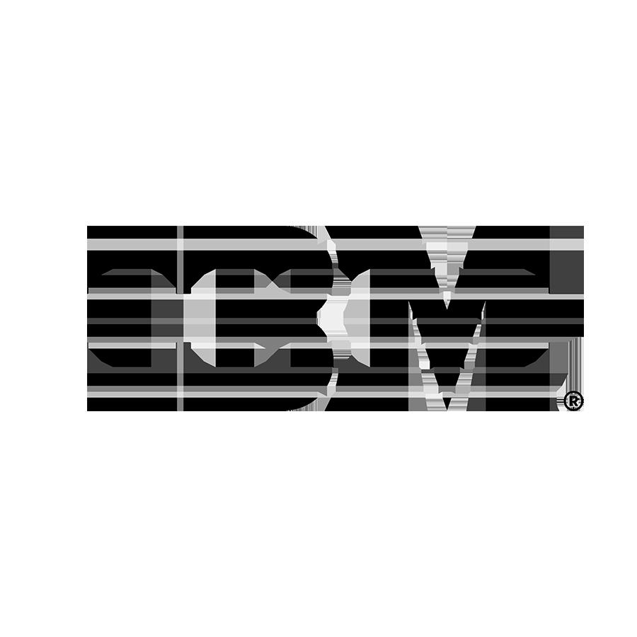 IBM Watson Translator logo