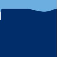 TransPerfect logo